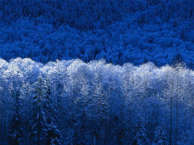 Χειμώνας.jpg